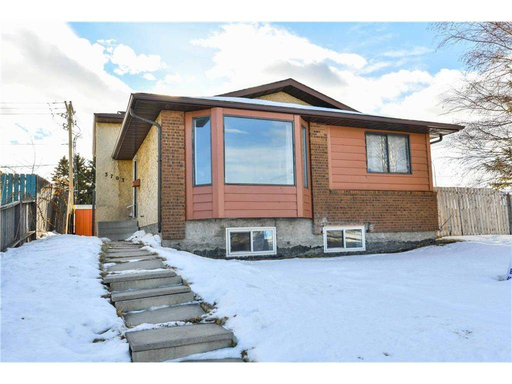MLS® #C4161279 - 3703 Whitehorn DR Ne in Whitehorn Calgary, Detached
