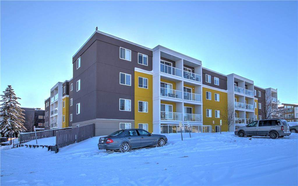 MLS® #C4165068 - #307 4455a Greenview DR Ne in Greenview Calgary, Apartment
