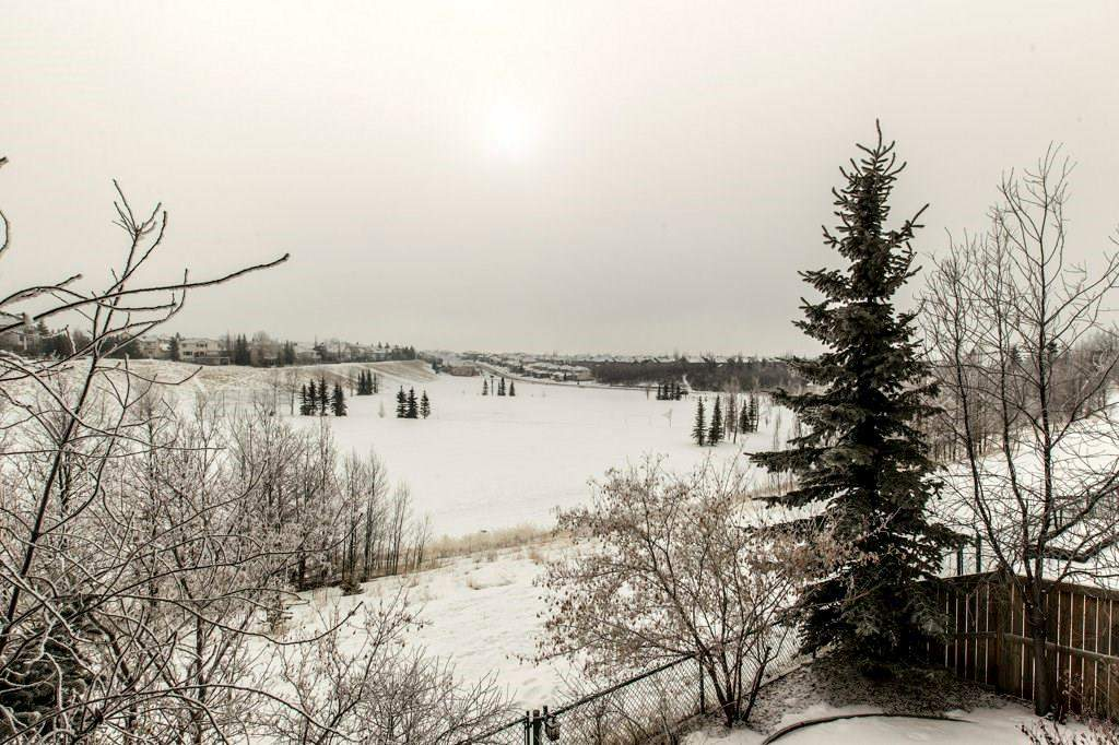 MLS® #C4167266 - 30 Arbour Butte CR Nw in Arbour Lake Calgary, Detached