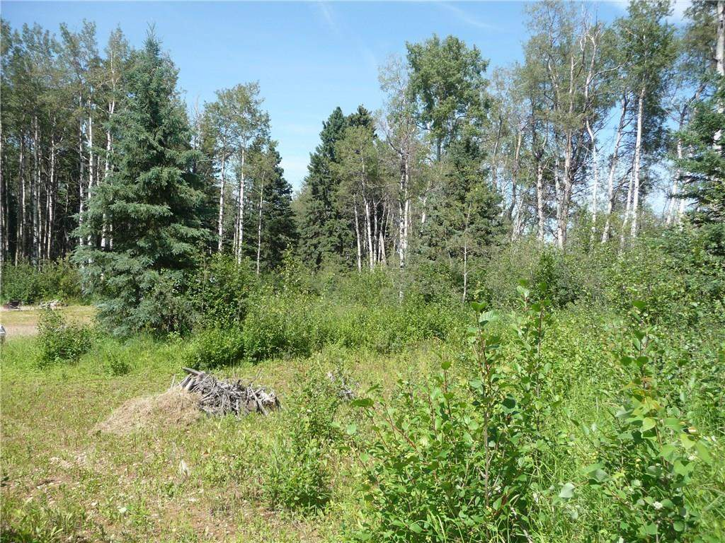 MLS® #C4182744 - #3, Lot 1 Cranberry Dr in None Rural Clearwater County, Land Open Houses