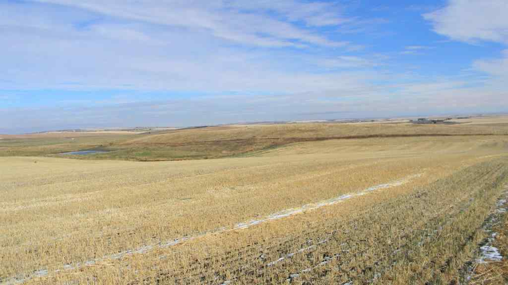 MLS® # A1042981 - Corner of HWY 543 & 96 Street  in NONE Rural Foothills County, Land Open Houses