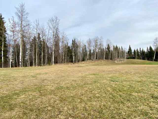 MLS® #A1047731 13 Hidden Valley Close  T4T 2A2 Rural Clearwater County