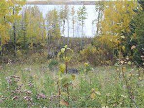 Cochrane Lake Homes for sale, Land