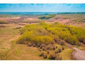 88046 198 AV W in  Rural Foothills M.D.-MLS® #C4012383