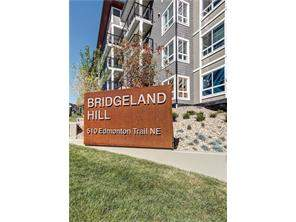#212 510 Edmonton Tr Ne, Calgary Community Apartment Real Estate:
