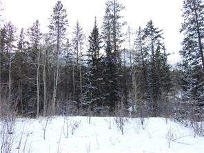 138 Cairns Landing, Canmore, Alberta, Three Sisters Land