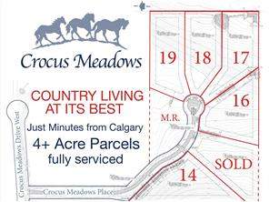 18 Crocus Meadows PL W in Crocus Meadows Rural Foothills M.D.-MLS® #C4105070