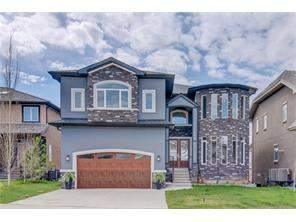 The Cove Chestermere Detached Foreclosures