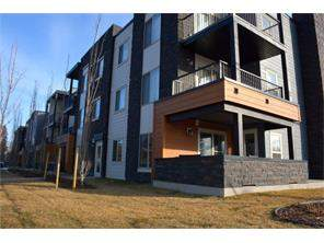 MLS® #C4108749, #116 2715 12 Ave  Se T2a 4Y5 Albert Park/Radisson Heights Calgary
