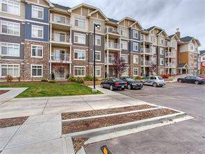 MLS® #C4110580-#2106 155 Skyview Ranch WY Ne in Skyview Ranch Calgary Apartment
