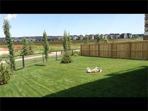 MLS® #C4111688, 125 Williamstown Gr Nw T4B 0S9 Williamstown Airdrie