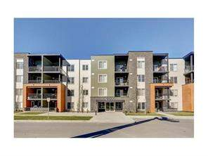 #3101 1317 27 ST Se, Calgary, Albert Park/Radisson Heights Apartment