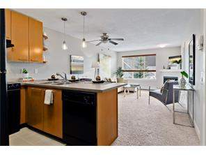 Lincoln Park Real Estate Listing: #349 35 Richard Co Sw, Lincoln Park