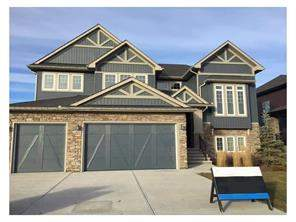 MLS® #C4113670, 224 Boulder Creek Dr T0J 1X3  Langdon