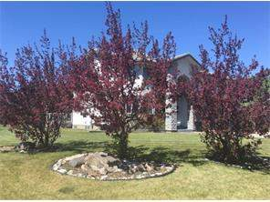 Detached None real estate listing Carstairs