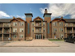 #222 207 Sunset Dr, Cochrane, Sunset Ridge Apartment Real Estate