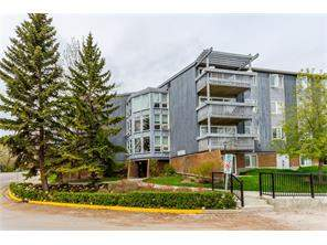 MLS® #C4116751-#309 816 89 AV Sw in Haysboro Calgary Apartment