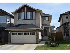 Chaparral Calgary Detached Homes for sale