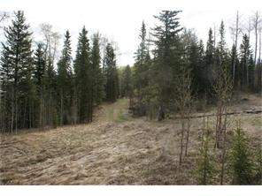 41 James River Cx in  Rural Clearwater County-MLS® #C4117905