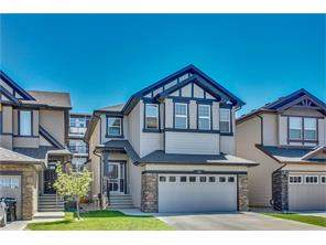 Detached Home For Sale at 36 Skyview Shores Mr Ne, Calgary MLS® C4119554