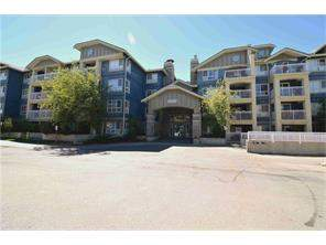 Apartment Home For Sale at #249 35 Richard Co Sw, Calgary MLS® C4120629