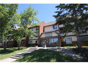 Forest Lawn Forest Lawn Calgary Apartment Homes for Sale