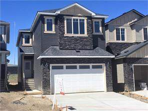 Nolan Hill Detached Homes For Sale