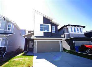 Livingston Calgary Detached homes
