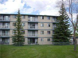 Calgary Dalhousie Homes for sale: Apartment Calgary
