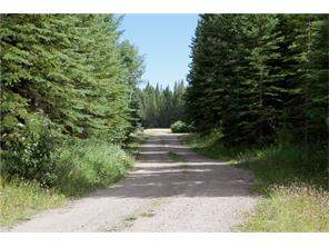 5439 Twprd 323a in  Rural Mountain View County-MLS® #C4130263
