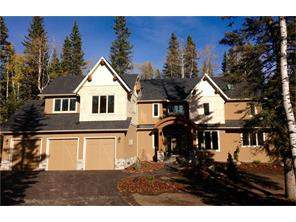 Priddis Greens Detached None real estate listing Priddis Greens