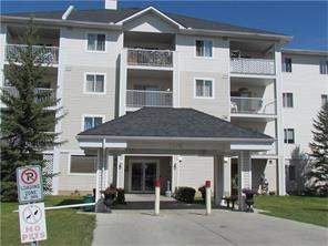Apartment Red Carpet Calgary Real Estate