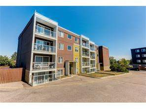 #401 4455d Greenview DR Ne, Calgary, Greenview Apartment Homes For Sale Homes for sale