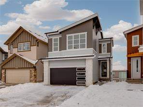 Carrington Calgary Detached Homes for Sale Homes for sale