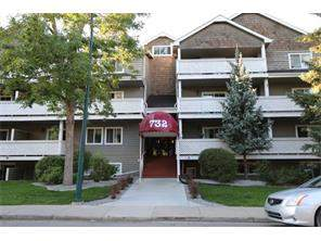Windsor Park Apartment Windsor Park Real Estate listing condominiums