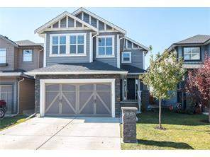 Williamstown Airdrie Detached Homes for sale