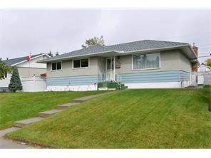 Greenview Detached Greenview real estate listing Calgary