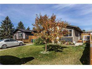 248 Doverglen PL Se, Calgary, Dover Detached homes