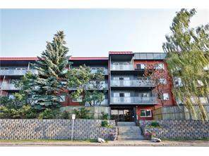 Greenview Apartment Greenview real estate listing Calgary