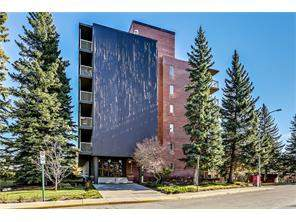 Apartment Rideau Park Calgary real estate