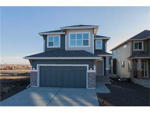 Air Ranch Okotoks Detached homes
