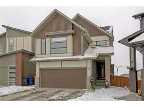 Walden Calgary Detached Homes for sale