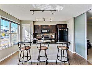 Apartment New Brighton Calgary real estate