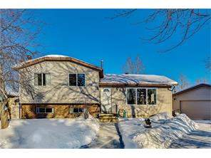 68 Whitlock CL Ne, Calgary, Detached homes