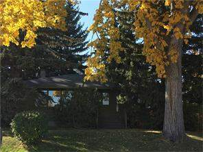 3031 36 ST Sw, Calgary, Detached homes