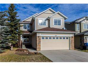 Cougar Ridge Calgary Detached homes