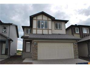 Detached homes for sale in Legacy Calgary