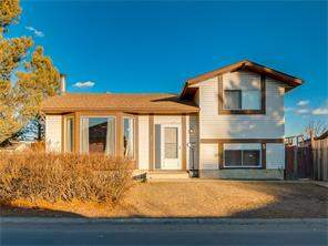 Detached Falconridge Calgary Real Estate