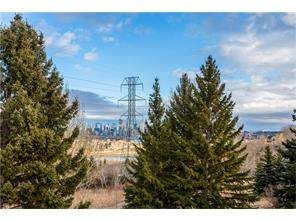 Spruce Cliff Homes For Sale at #302 328 Cedar CR Sw, Calgary MLS® C4149616
