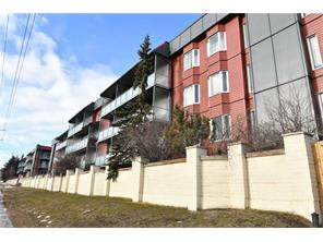 #203 333 Garry CR Ne, Calgary, Greenview Apartment